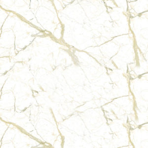 Calacatta Countertop Colors